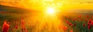 cropped-sunrise-photo.jpg